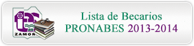 PRONABES 2013-2014