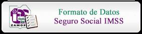 Formato de Datos Seguro Social IMSS