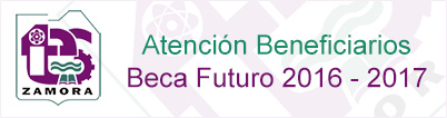 Beneficiarios de Beca Futuro 2016 - 2017