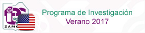 Programa de Investigación Verano 2017